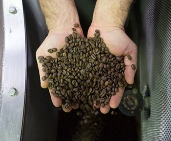 Coffex Coffee Talks the Ethical Coffee Bean